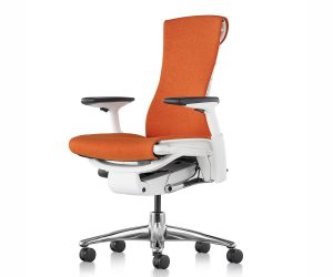 Herman Mille Embody Chair